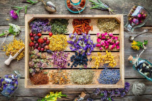 علاج اللحمية بالأعشاب