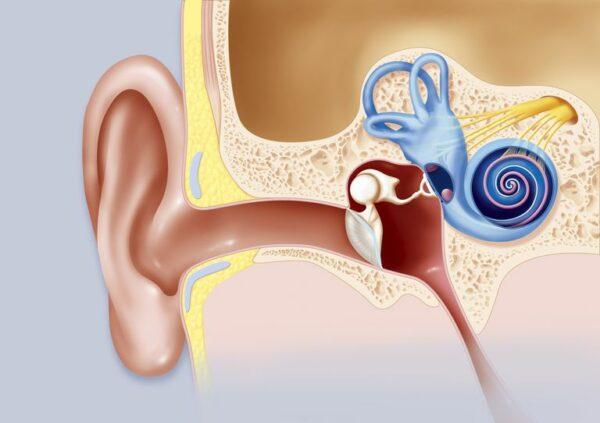 عملية تركيب أنابيب تهوية الأذن